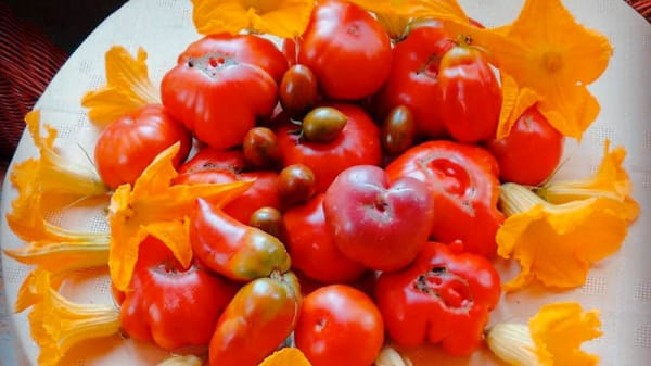Suggerimento dello chef - Le Ortensie, Gemonio