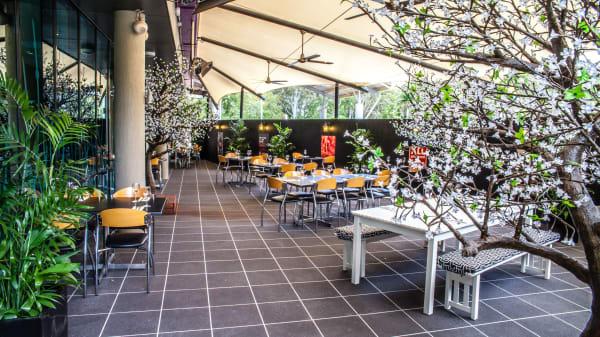 Botanic Dining - Bribie Island RSL, Bongaree (QLD)
