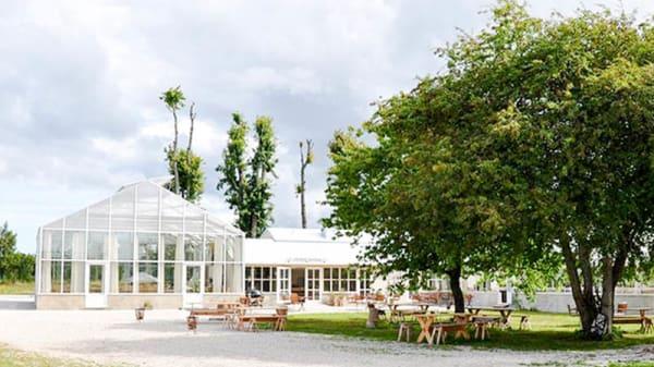 Garden - Lilla Bjers gårdskrog, Visby