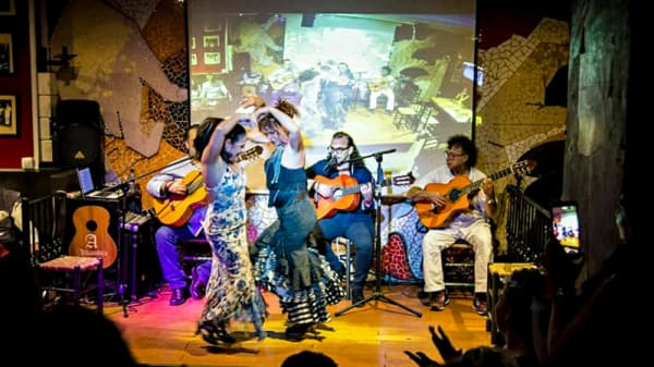 Espectaculo - Tablao Flamenco el Toro y la Luna, Valencia