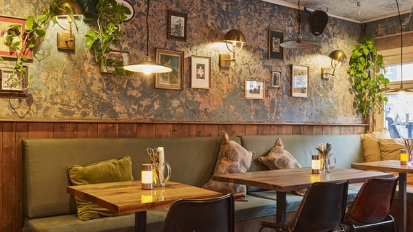 Restaurant - Cafe Cha Cha, Amsterdam