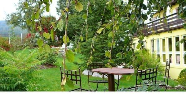 Zoom sur la terrasse - La Clef des Songes, Le Hohwald
