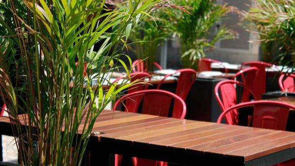 Esplanada - Udon - Noodle Bar & Restaurant, Lisboa