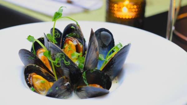 Mussels - Swea Hof, Göteborg