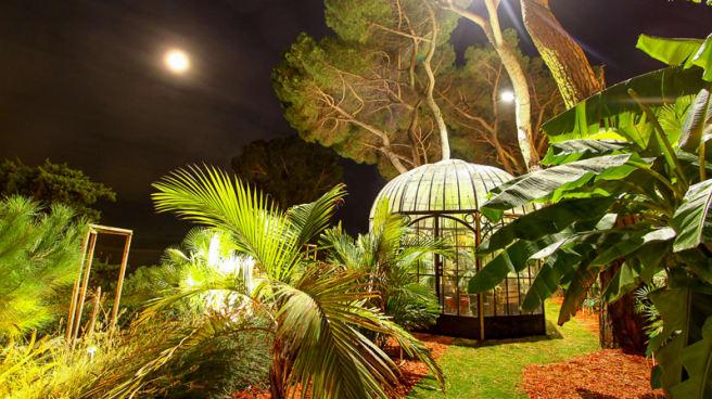 Dans le parc des Pins Penchés - Les Pins Penchés, Toulon