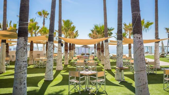 Terraza - Club del Mar - Hotel Villa Padierna Palace, Marbella