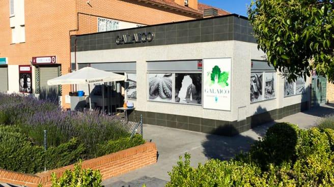 Entrada - Galaico Restaurant and Drink, Arroyomolinos