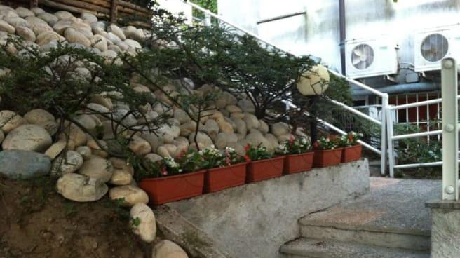 scalinata con piantine - Pulcinella, Como