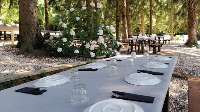 pranzo in pineta 2 - Piccolo Paradiso