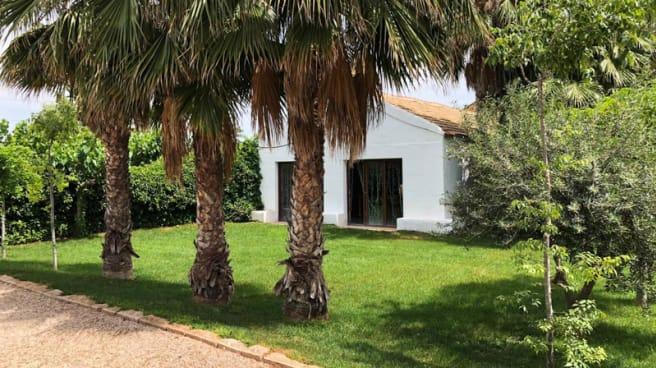 Jardín - Cenas en Siempre Verde, Murcia