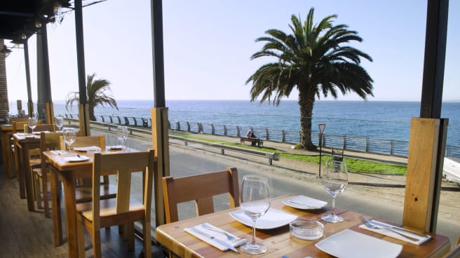 WineCaina, Viña del Mar