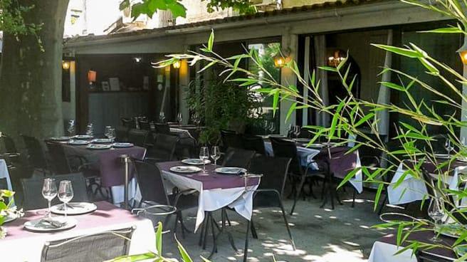 le patio ombragué grâce à un platane centenaire - La coquille, Villeneuve-lès-Avignon