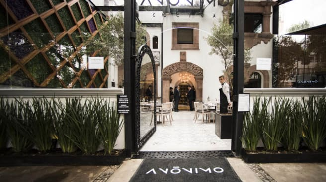 Terraza - Anónimo Cocina, Ciudad de México