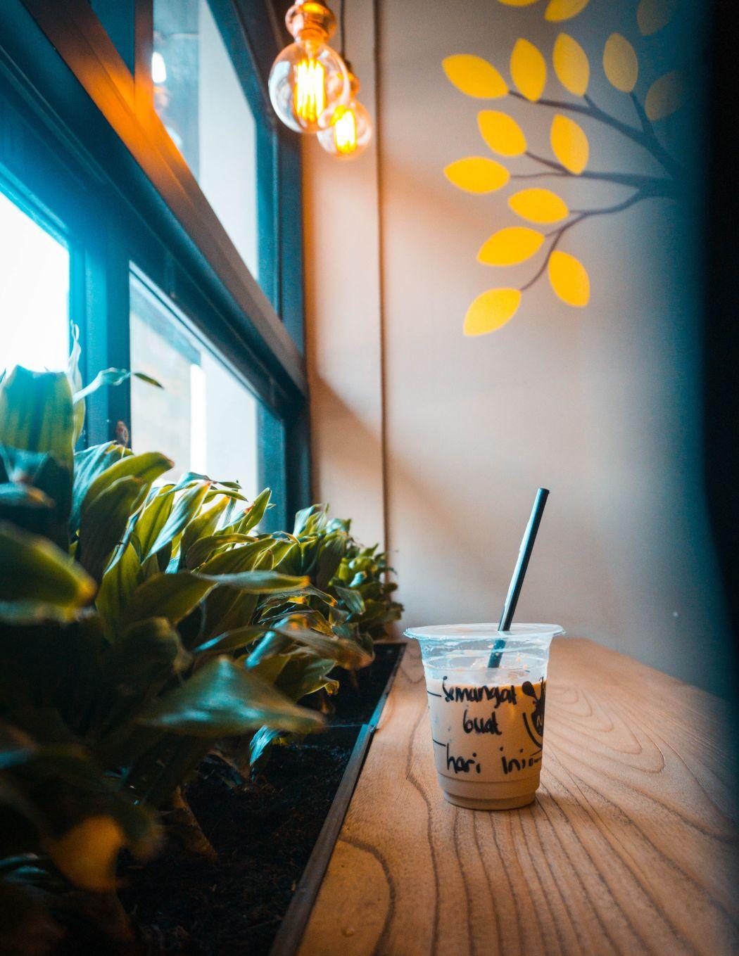 Protein Starbucks Treat