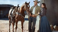 An Western: The Man From Laramie (TS)