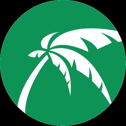 PalmPay en español