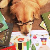 A golden retriever wearing glasses lying on a spread of children's books