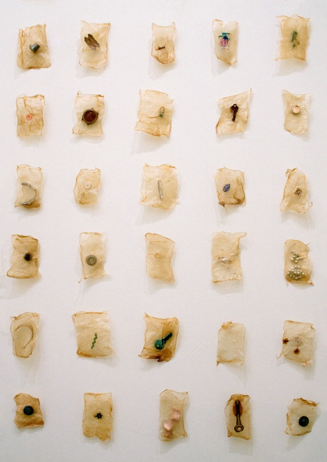 Lisa Kokin, Inventory (1997)