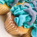 Dolphins Cupcakes sydney