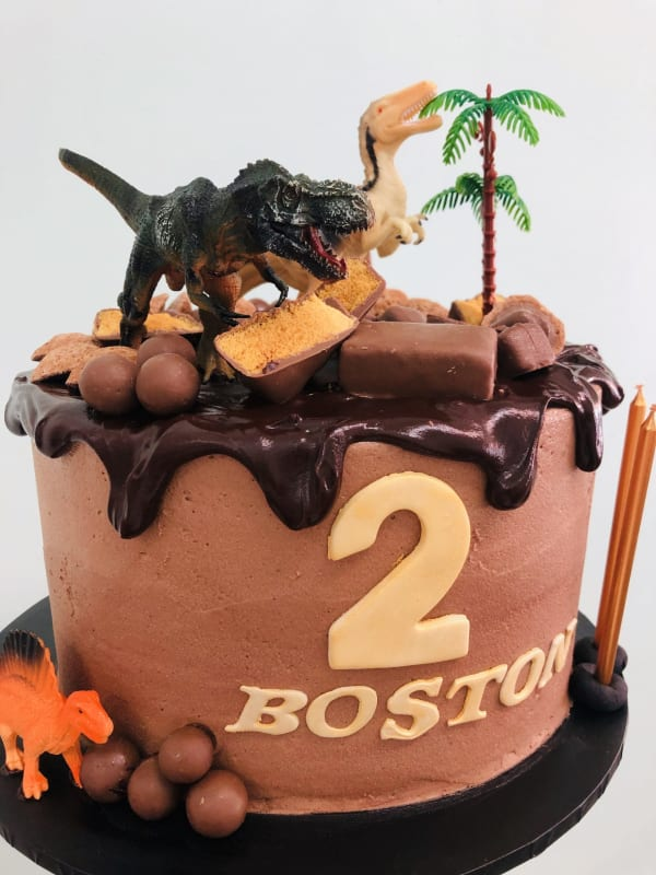 Dinosaur Choc Drip Cake