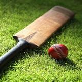 cricketgrp
