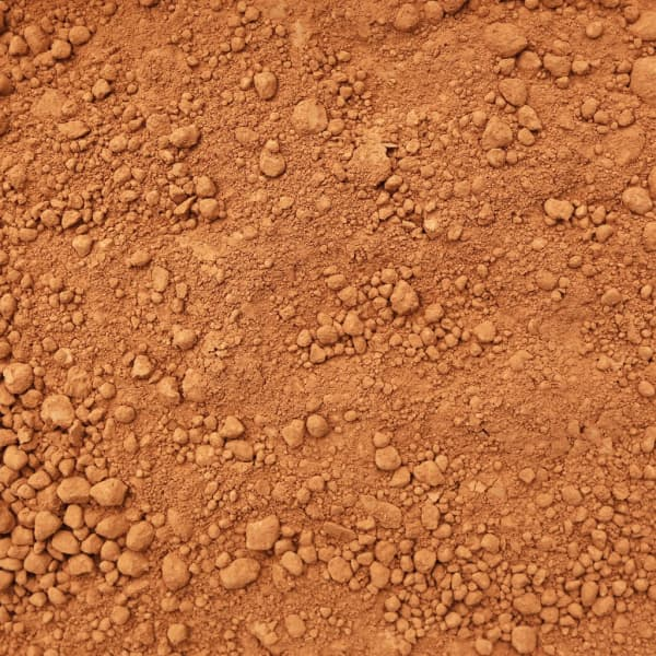 Organic Cacao Powder 1