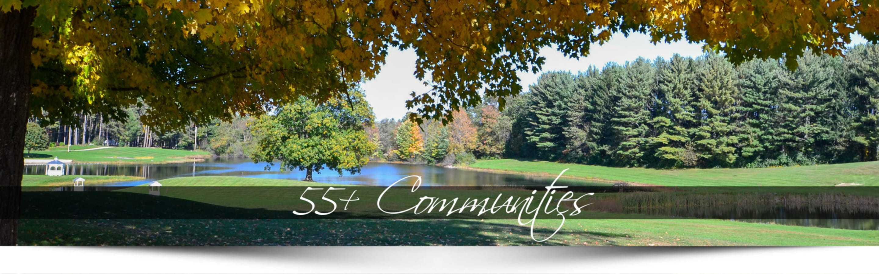 """Landscape of a lake and trees with text that reads """"55+ Communities"""""""