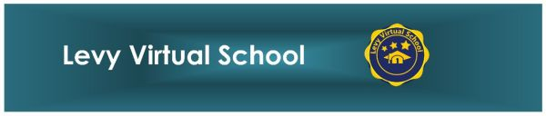 Levy Virtual School