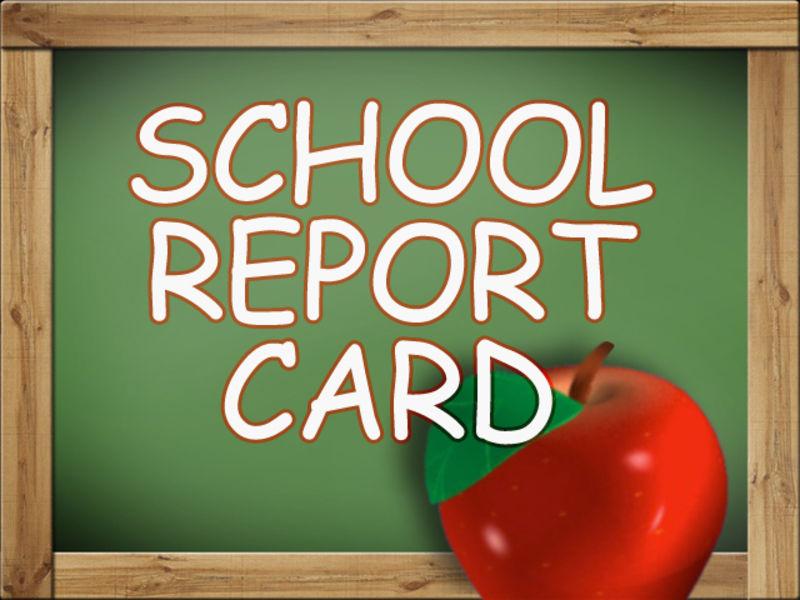 Buy a report for school