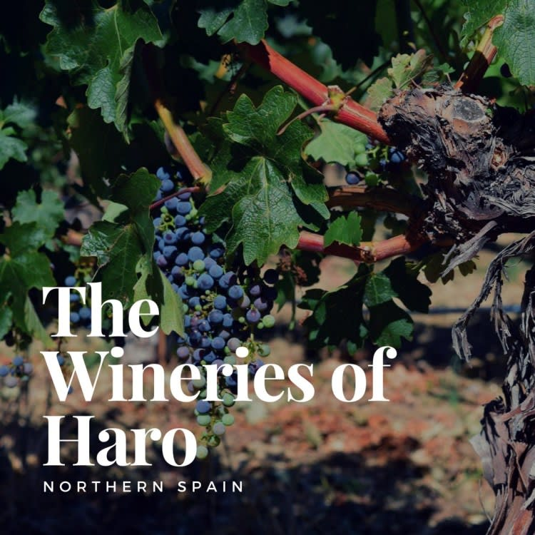 A Day in Haro, Spain, Wine Producers of the North