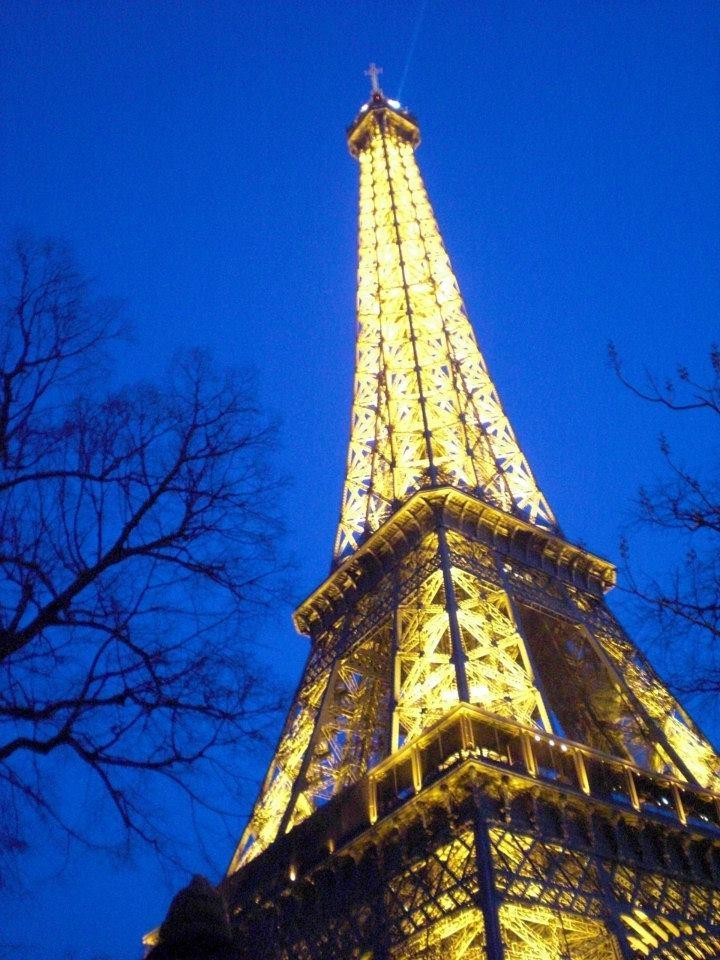 City Of Light- Attack on Paris