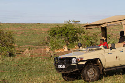 3 Nights / 4 Days Maasai Mara Safari - Mara Ngenche Safari Camp