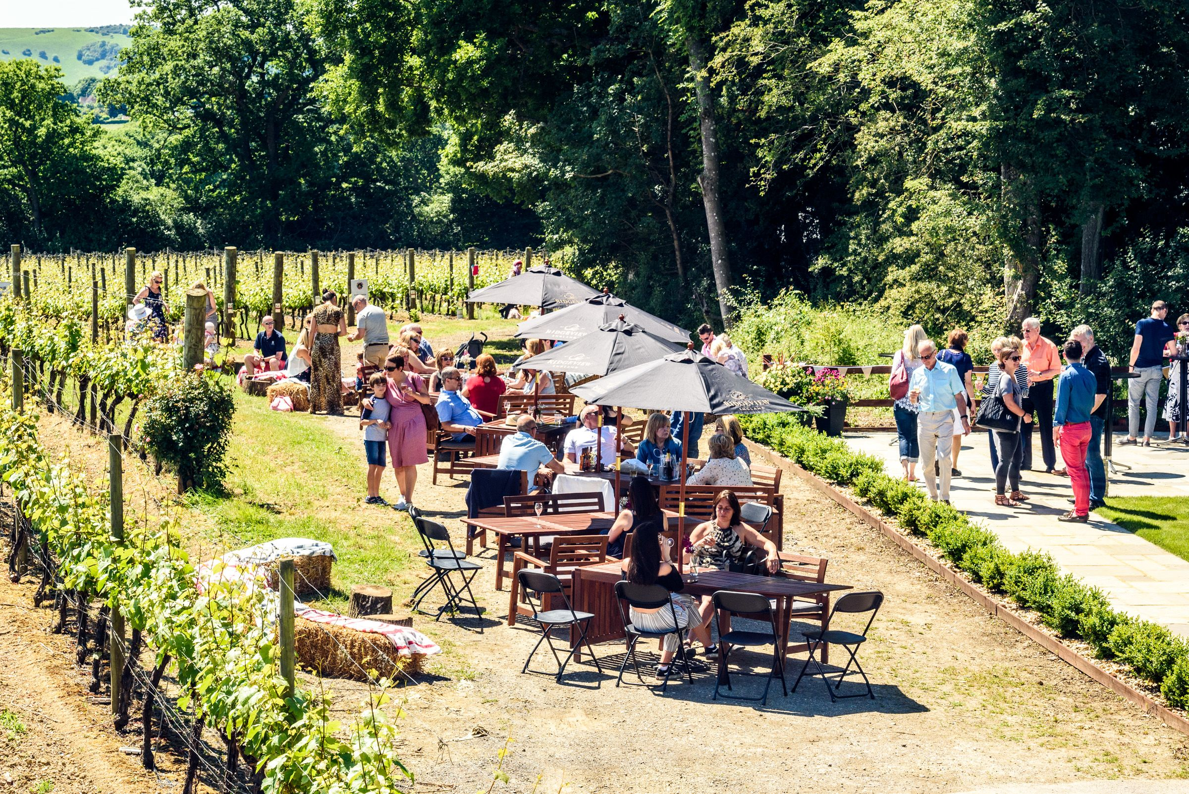 Image of English Wine Week: Founders Retreat event