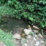 The Water Project: Shiamala Community, David Ashiona Spring -  Unprotected Spring