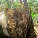 The Water Project: Eluhobe Community, Amadi Spring -  Bathing Room