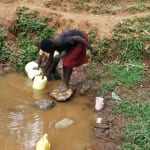 The Water Project: Shitaho Community, Andrea Kong'o Spring -  Fetching Water
