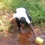 The Water Project: Mudete Community, Wadimbu Spring -  Fetching Water From Wadimbu Spring