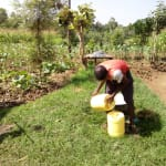 The Water Project: Timbito Community, Wakamu Spring -  Storing Water