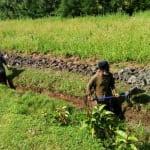 The Water Project: Timbito Community, Wakamu Spring -  Digging Drainage