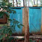 The Water Project: Muleche Primary School -  Latrines
