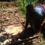 The Water Project: Mudete Community, Wadimbu Spring -  Sanitation Platform Drying
