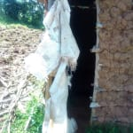 The Water Project: Mukhangu Community, Okumu Spring -  Sample Latrine