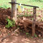The Water Project: Mbuuni Community B -  Handwashing Station By Latrine