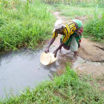 The Water Project: Bukhanga Community, Indangasi Spring -  Fetching Water