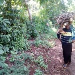 The Water Project: Hirumbi Community, Khalembi Spring -  Woman Carrying Firewood Home