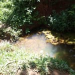 The Water Project: Hirumbi Community, Khalembi Spring -  Current Water Source