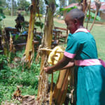 The Water Project: Kigulienyi Primary School -  Demonstrating Handwashing