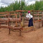 The Water Project: Rubana Yagilewo Community -  Kunihira Roselyne Pumps Water