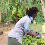 The Water Project: Hirumbi Community, Khalembi Spring -  Alice Washes Her Hands Outside Her House