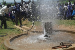 The Water Project: Eshikalame Primary School Water Project -